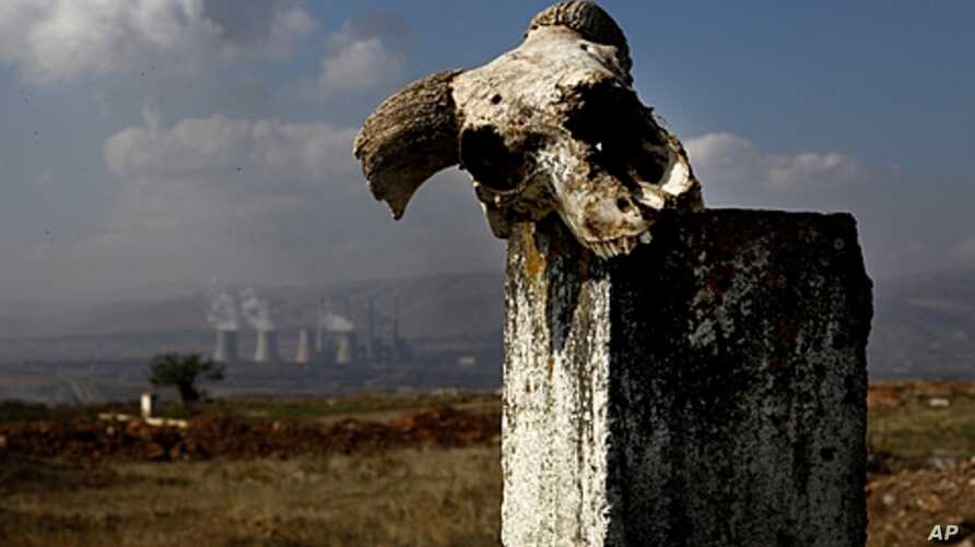 World Wildlife Fund ranked power plants like this one outside Kozani in northern Greece, which generate 70 percent of the country's power, among top polluters in the EU, Sept. 29, 2011.