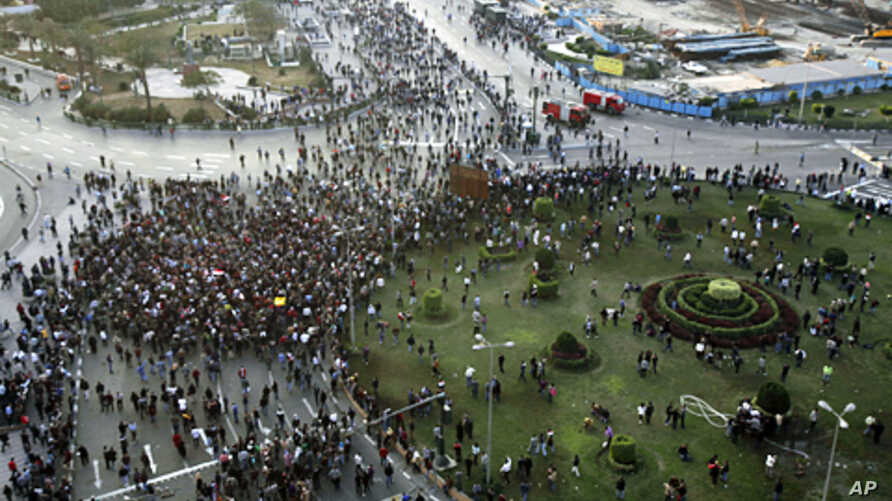Anti-government protesters demonstrate at Tahrir Square in downtown Cairo, January 25, 2011