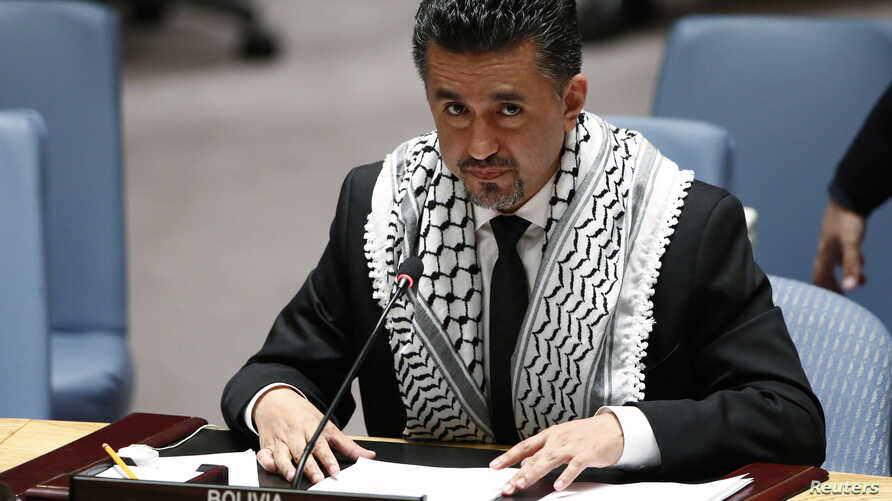 Bolivia's Ambassador to the United Nations Sacha Llorentty addresses the Security Council during a meeting about the situation in the Middle East at United Nations headquarters in New York, July 22, 2014.