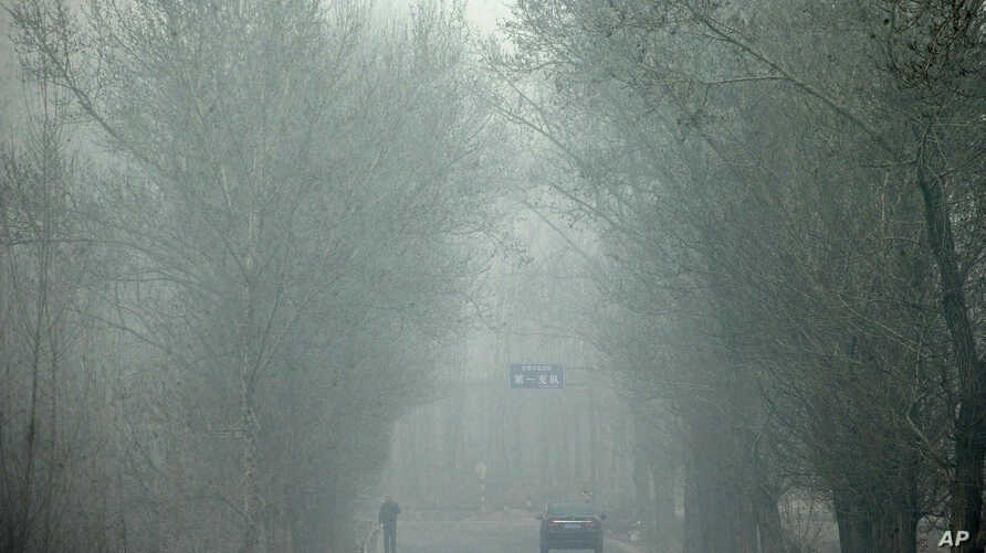 Heavy haze on a severely polluted day obscures a man and a car traveling on a road in Pingshan county of Shijiazhuang in northern China's Hebei province, Feb. 26, 2014.