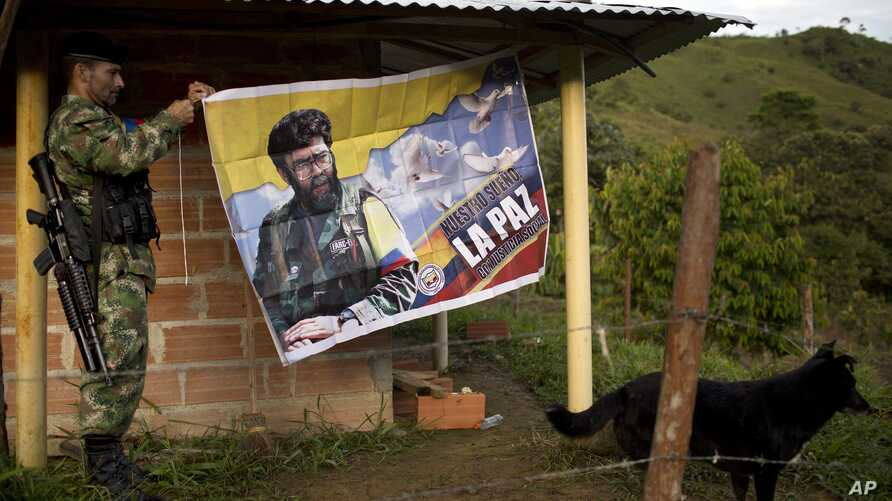 "FILE - Orlando, a rebel fighter for the 36th Front of the Revolutionary Armed Forces of Colombia, or FARC, hangs a banner featuring the late rebel leader Alfonso Cano with a message that reads in Spanish: ""Our dream is peace with social justice,"" in ..."
