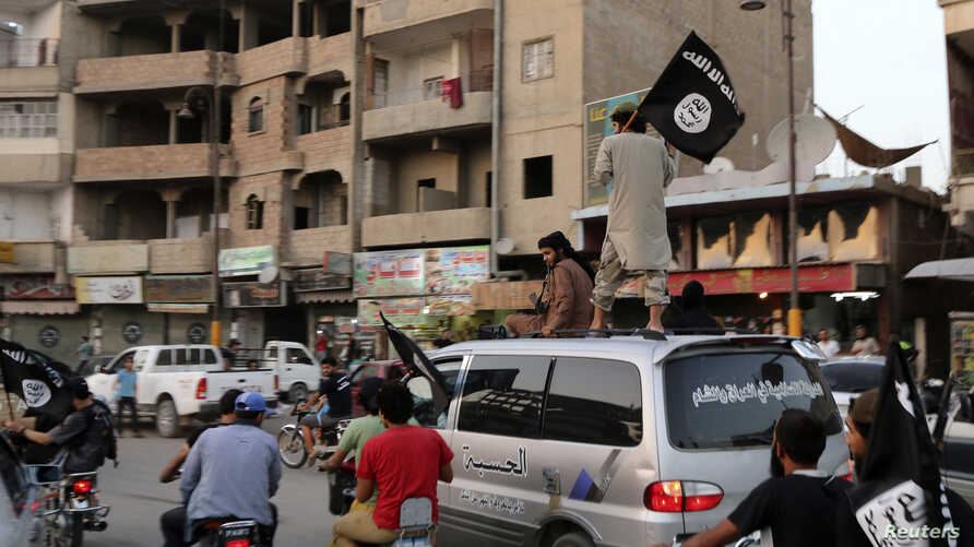 Members loyal to the Islamic State in Iraq and the Levant (ISIL) wave ISIL flags as they drive around Raqqa, June 29, 2014.