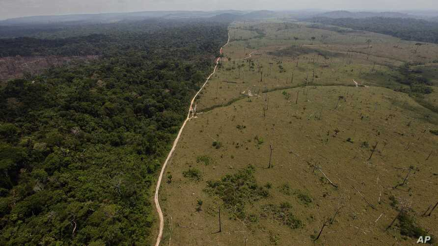 FILE - In this Sept. 15, 2009 file photo, a deforested area is seen near Novo Progresso in Brazil's northern state of Para.  Deforestation in Brazil's Amazon rainforest has dropped to its lowest level in 24 years, the government said Tuesday, Nov. 27