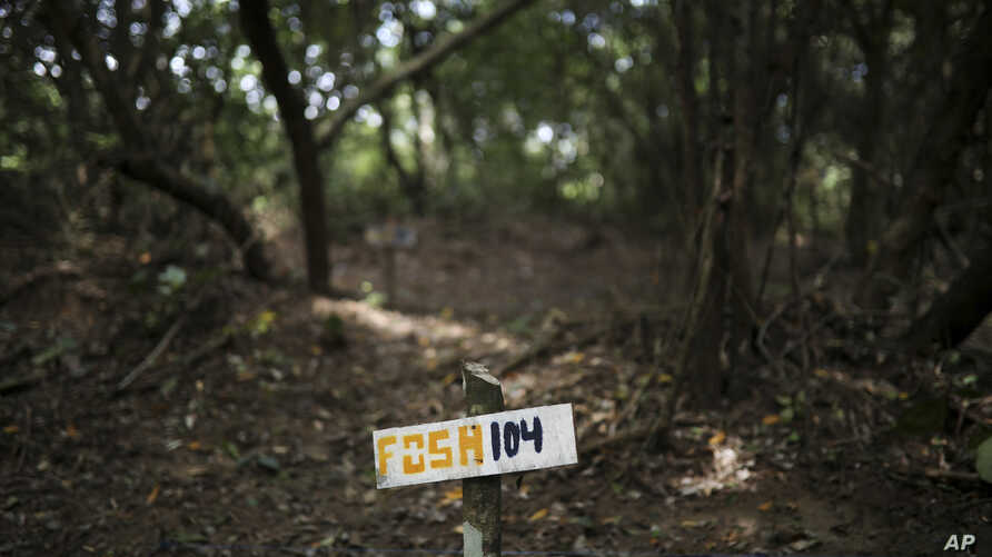 FILE - A wooden sign indicates clandestine grave number 104 where almost 300 were found in Colinas de Santa Fe, Mexico, Oct. 15, 2018.