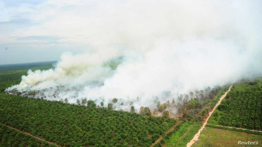 FILE - A wildfire is seen from a Ministry of Environment and Forestry helicopter over Kubu Raya, near Pontianak, West Kalimantan, Indonesia, Aug. 25, 2016.