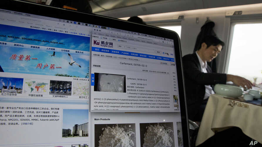 FILE - A man drinks tea near a computer screen displaying websites of companies selling carfentanil online on a train leaving Beijing.
