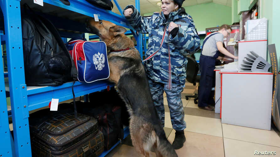A Russian police officer leads her sniffer dog to check luggage for explosives at a left-luggage room at a railway station in the Siberian city of Krasnoyarsk, Russia April 4, 2017.