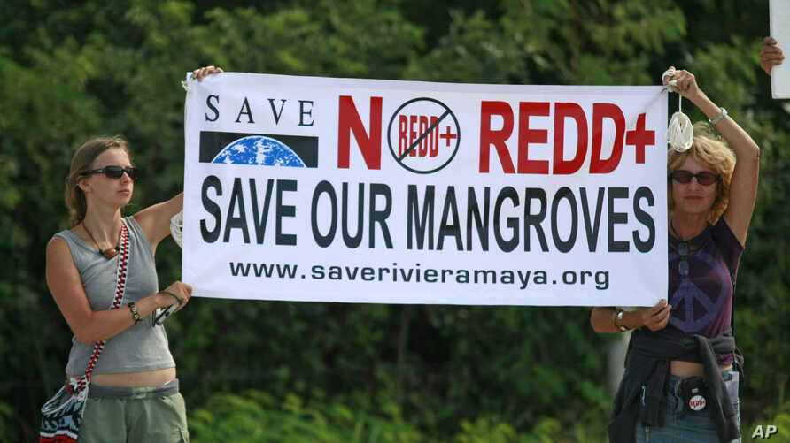 FILE - Two protesters from environmental groups protest holding up a banner against the REDD, the UN program to reduce deforestation and forest degradation in developing countries.