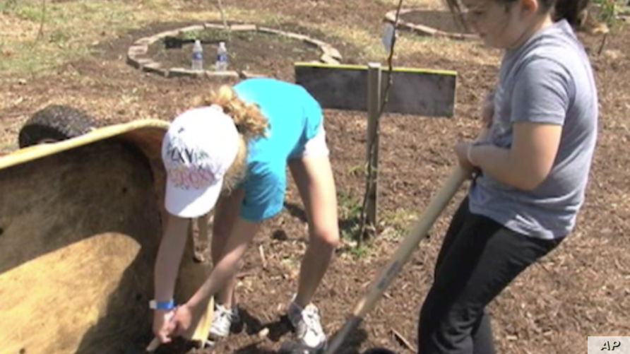 Big Sunday Projects Put 50,000 Volunteers to Work