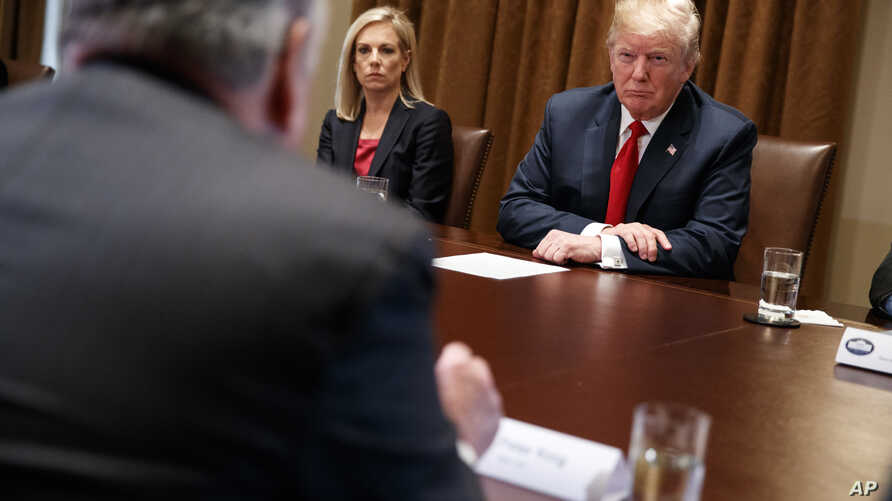 Secretary of Homeland Security Kirstjen Nielsen and President Donald Trump listen to Rep. Peter King, R-N.Y., during a meeting with law enforcement officials on the MS-13 street gang and border security, in the Cabinet Room of the White House, Feb. 6...