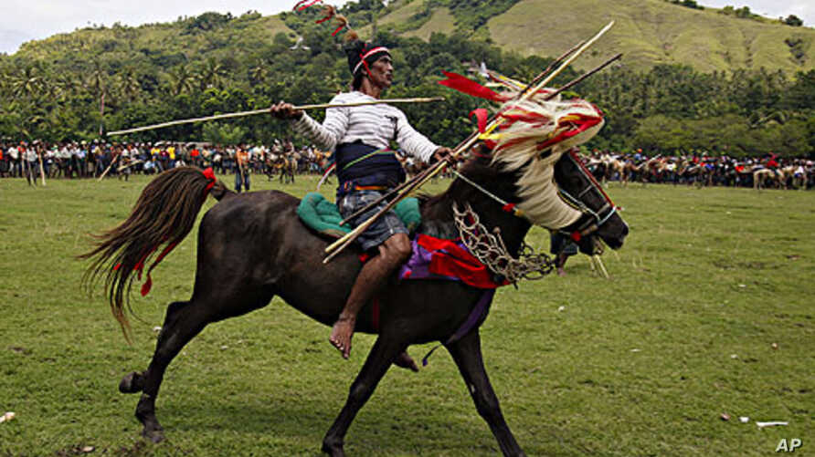 A rider prepares to throw a blunted spear during the Pasola festival on the Indonesian island of Sumba