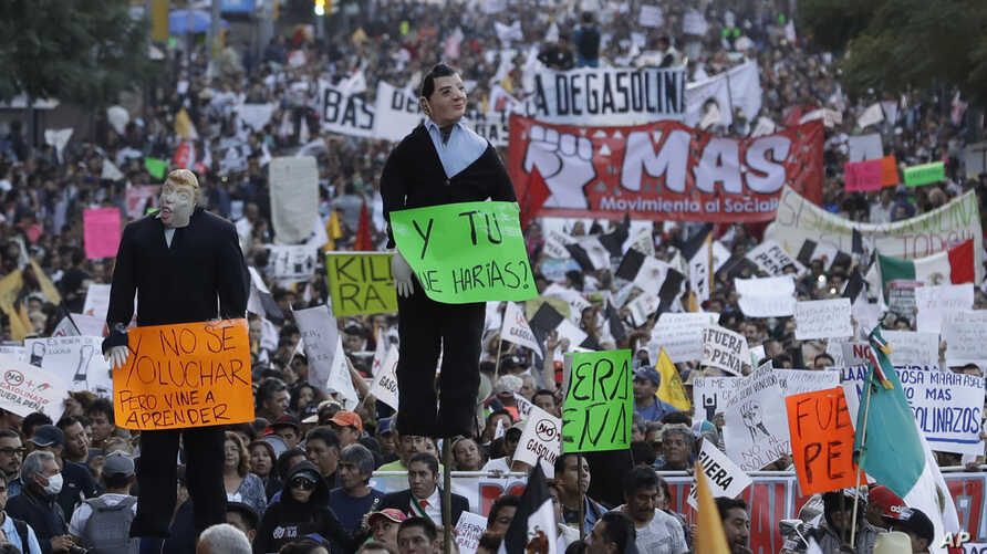 People carry effigies of Mexican President Enrique Pena Nieto and U.S. President-elect Donald Trump as thousands march in anger against the government following a 20 percent rise in gas prices, in Mexico City, Jan. 9, 2017.