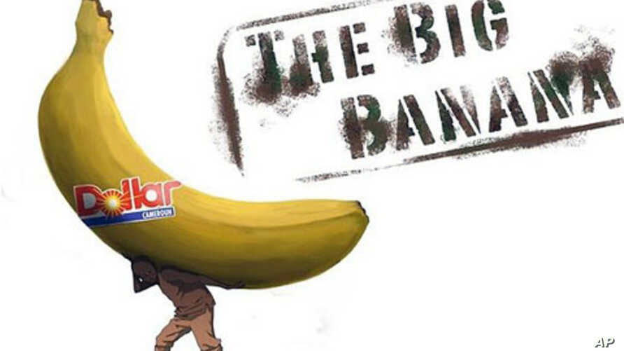 'The Big Banana' documentary shows the effects of an export banana plantation on the Mungo region of Cameroon, August 2011