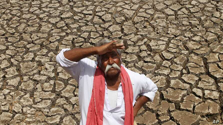 An Indian farmer looks skyward as he stands on a dried bed of a water body on the outskirts of Ahmadabad, India, Tuesday, July 8, 2014.