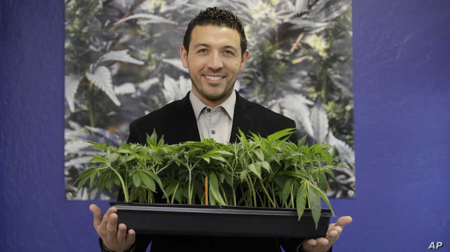 In this Dec. 29, 2017, photo, Khalil Moutawakkil, co-founder and CEO of KindPeoples, poses for a portrait with some marijuana plants in his dispensary in Santa Cruz, Calif.