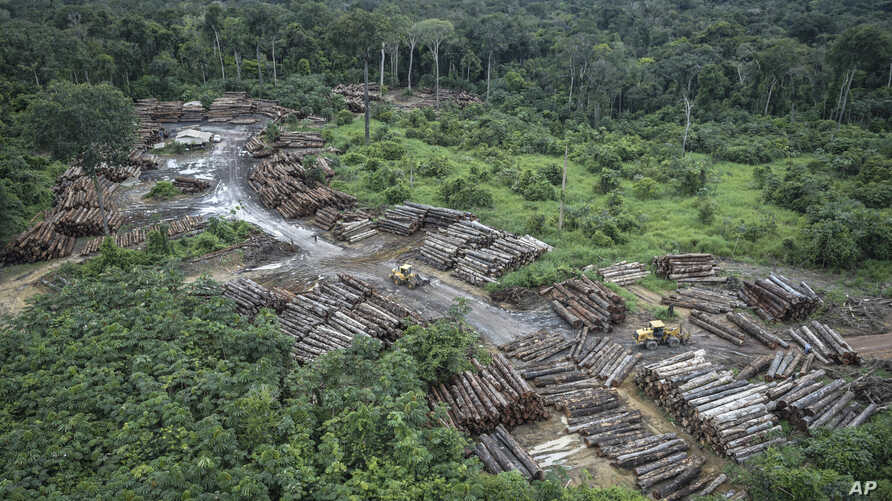 This May 8, 2018 photo released by the Brazilian Environmental and Renewable Natural Resources Institute shows an illegally deforested area in Brazil's Amazon basin. Scientists warn that Brazil's President-elect Jair Bolsonaro could push the Amazon r