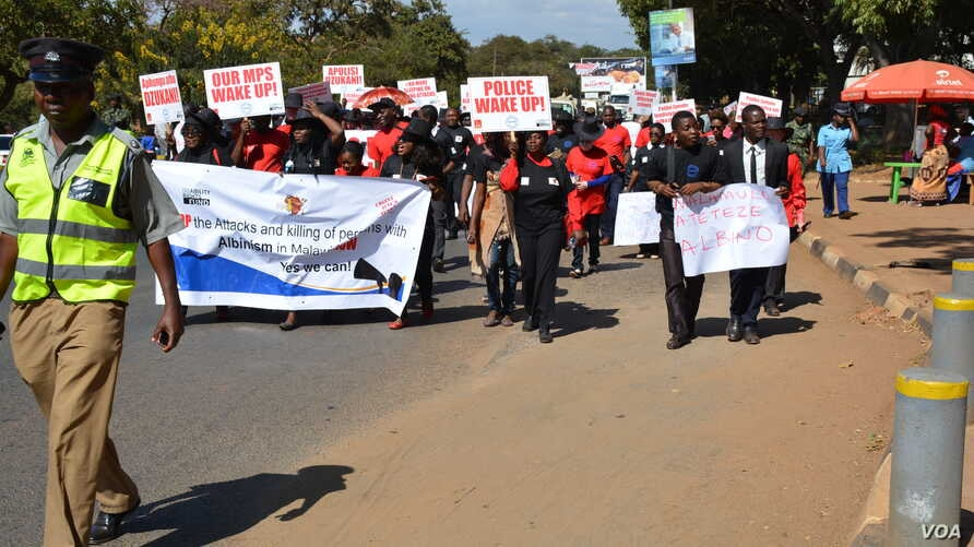 Protesters march against attacks on people with albinism in Lilongwe, the capital of Malawi in early 2016. Now the attacks have resurfaced. Albinos are targeted because of the false belief that their body parts have powers to increase wealth.