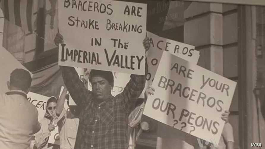 Travelling Smithsonian Exhibit Highlights Bracero Worker Program