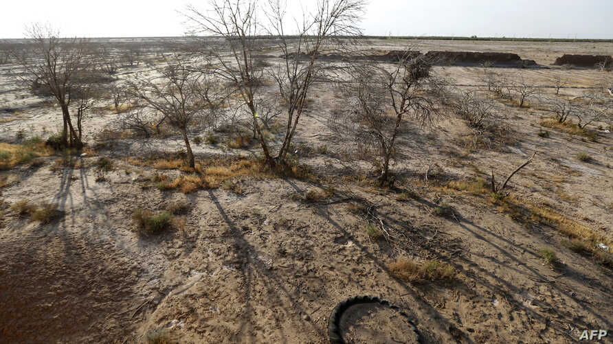 FILE - A picture taken in a abandoned village near the southern Iranian city of Sirjan shows dead pistachio trees at a field that farmers left behind because of the lack of water,  Aug. 14, 2016. Iran's farmers have struggled with several successive