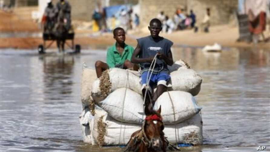 Horse cart drivers transport goods and passengers through deep flood waters in Sicap Mbao, a neighborhood on the outskirts of Dakar, Senegal (file)