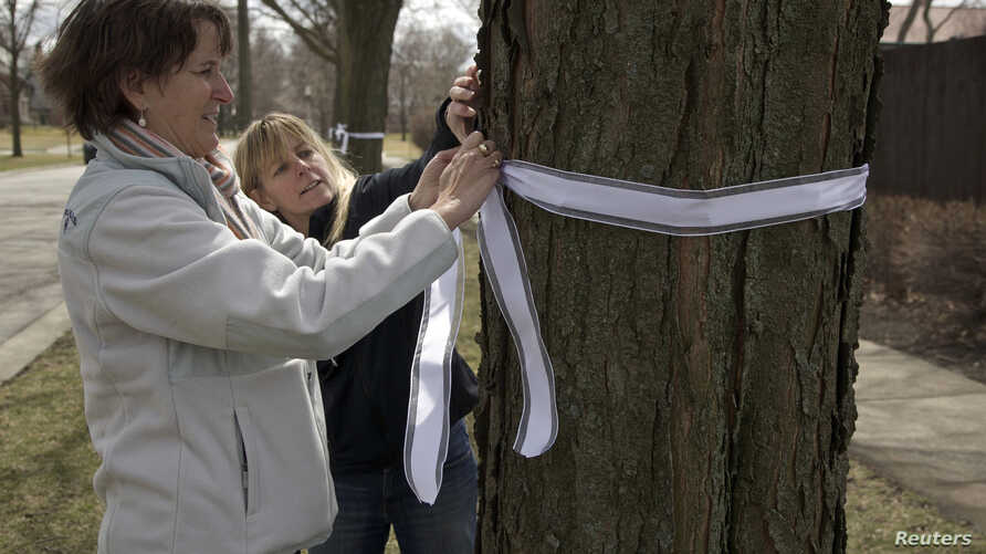 Carla Sloan (L) and Liz Ziehl, friends and neighbors of diplomat Anne Smedinghoff, who was killed in Afghanistan, tie a ribbon on a tree in River Forest, Illinois, April 8, 2013.