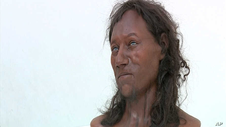 "Dutch ""paleo artists"" Alfons and Andrie Kennis' likeness of ""Cheddar Man"", an ancient Briton scientists believe had dark skin and blue eyes."