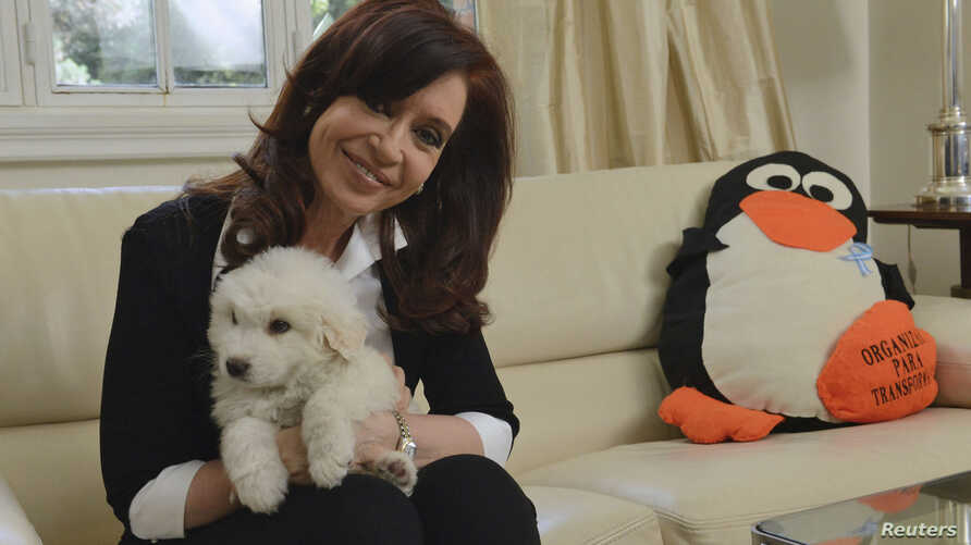 Argentine President Cristina Fernandez poses with her dog at the Olivos Presidential residence in Buenos Aires in this Nov. 18, 2013 handout supplied by the Argentine Presidency.