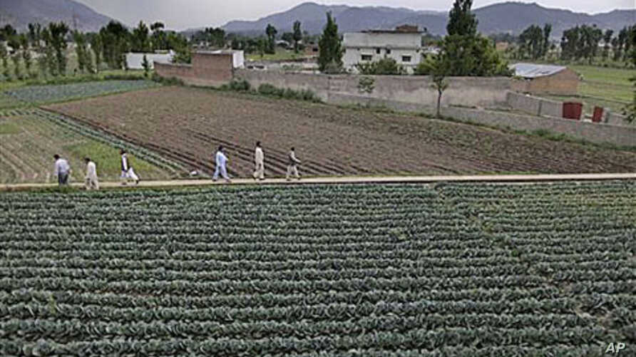 In this May 2011 file photo, Pakistani men walk next to the house where al-Qaida leader Osama bin Laden was caught and killed in Abbottabad, Pakistan. (file photo)