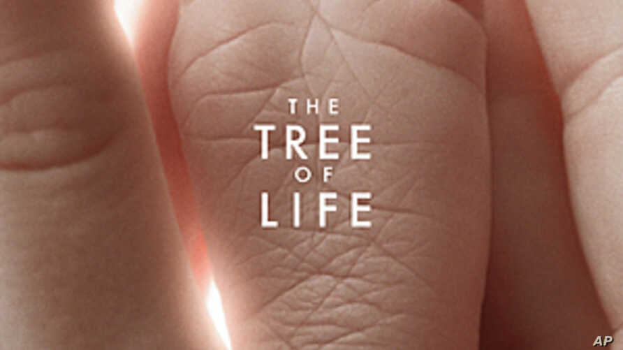 Award-Winning Film Explores Meaning of Life