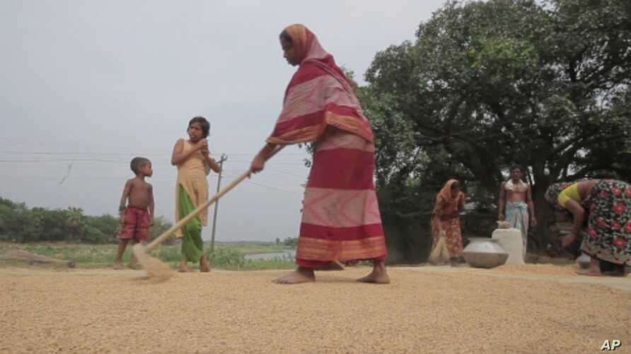 Women farmers in Bangladesh have learned they play an important role that ensures food security for their families.