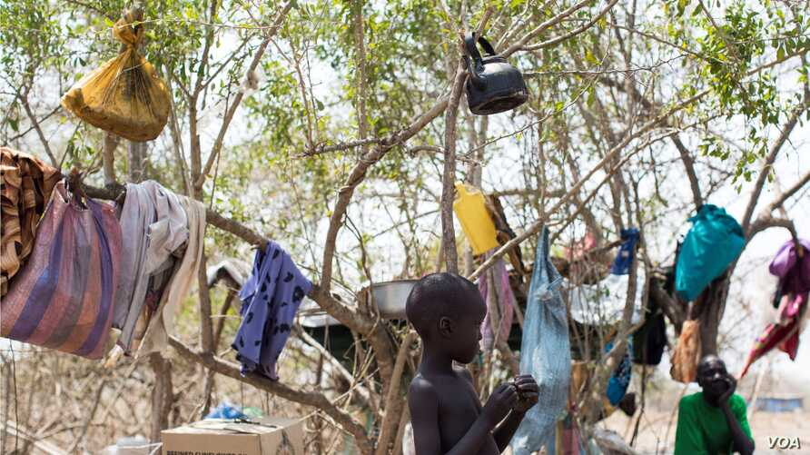 A young boy stands in front of the tree in a camp for the displaced in Mingkamen, where he and his family fled as violence raked the town of Bor in Jonglei state.