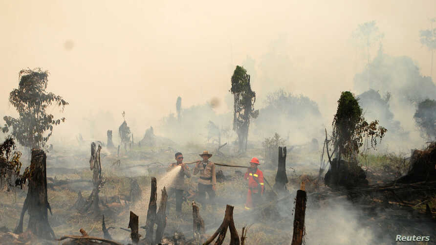 Police and a firefighters try to extinguish a forest fire in a village in Riau province, Sumatra, Indonesia.