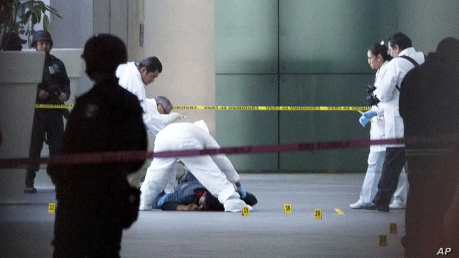 A forensic team inspects a body at Mexico City's International Airport Terminal 2, June 25, 2012.