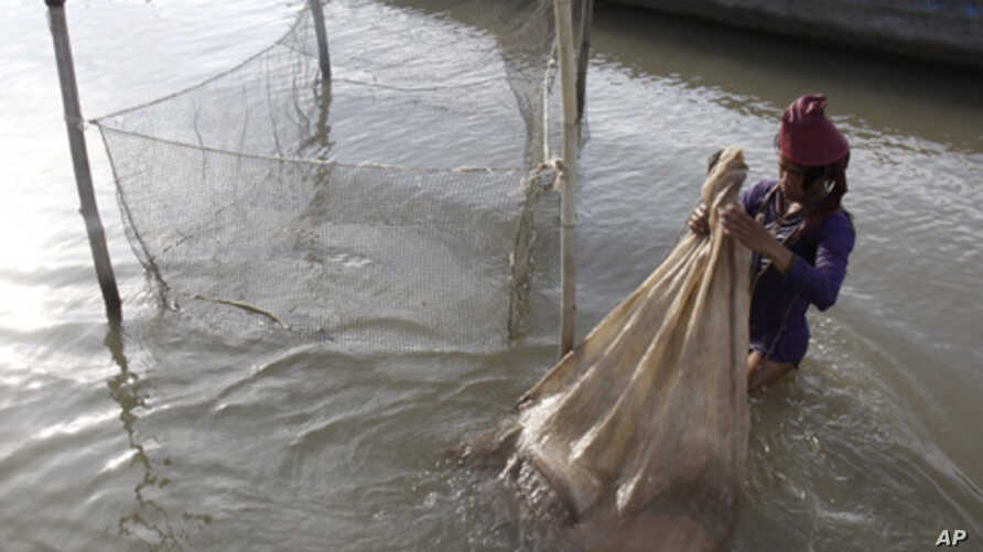 A Cambodian fisherman holds a bag loaded with fish he caught in the Mekong River near Phnom Penh, Cambodia, Tuesday, April 19, 2011.