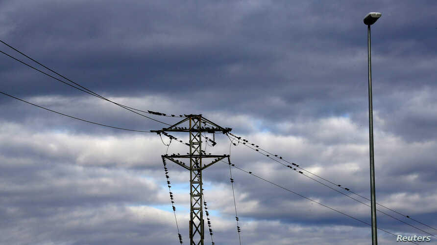 FILE - Migratory birds, headed towards Africa, perch on electrical cables in Cambrils near Tarragona.