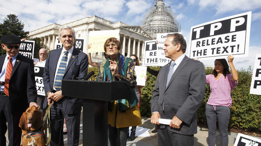 FILE - Rep. Rosa DeLauro, center, joined at left by Rep. Lloyd Doggett, a bloodhound named Roxy, Rep. David Cicilline (r) and other members of Congress, speaks at a news conference on Capitol Hill in Washington, Oct. 29, 2015, about the details of th