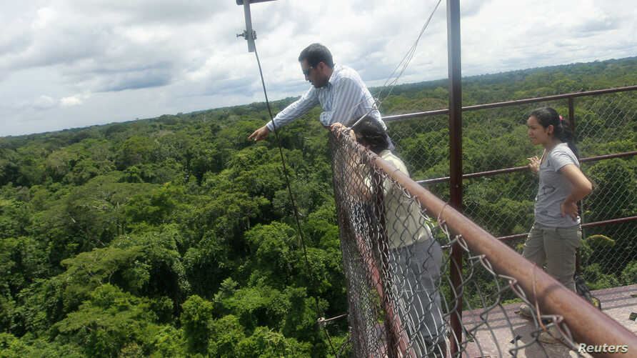 Research assistant Fabian Limonchi checks equipment on a 42-meter observation tower in the Tambopata National Reserve in the Amazon rainforest in Madre de Dios Dec. 4, 2012.