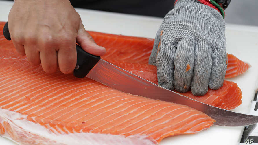 Jim Lagucik, of Trident Seafoods, cuts a Copper River king salmon, May 18, 2018, at Seattle-Tacoma International Airport in Seattle.