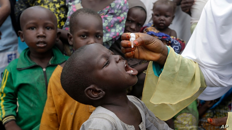 FILE - A health official administers a polio vaccine to children at a camp in Maiduguri, Nigeria, Aug. 28, 2016.