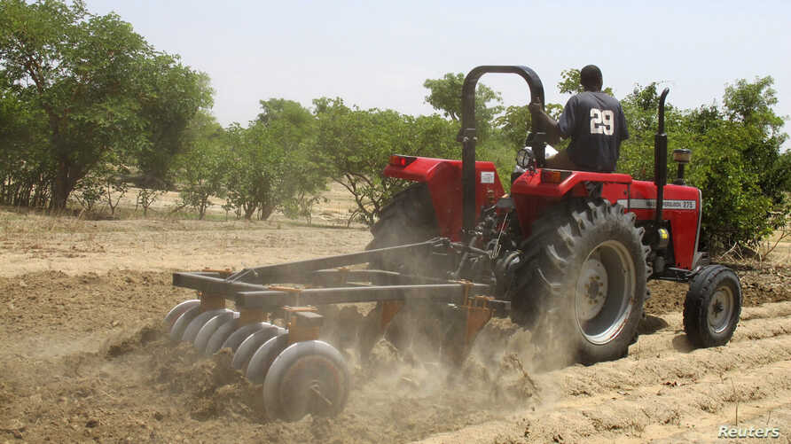 A farmer plows the field in Saulawa village, on the outskirts of Nigeria's north-central state of Kaduna, May 2013 file photo.