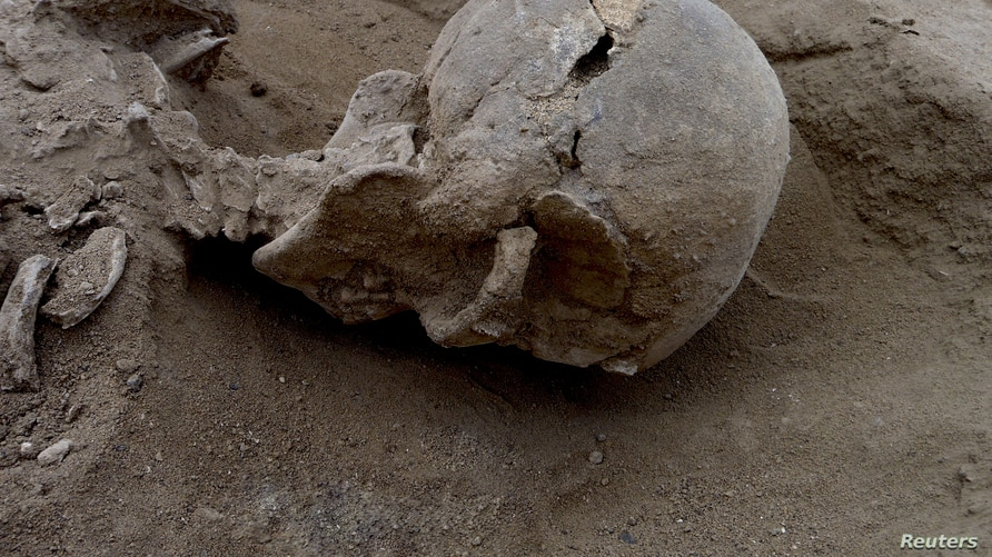 Detail of the skull of the skeleton of a man found lying prone in the sediments of a lagoon 30km west of Lake Turkana, Kenya, at a place called Nataruk, is pictured in this undated handout photo obtained by Reuters, Jan. 20, 2016.