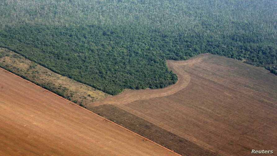 An aerial view shows the Amazon rainforest (top) bordered by land cleared to prepare for the planting of soybeans, in Mato Grosso state, western Brazil, Oct. 2, 2015.