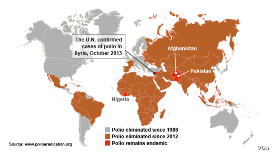 Cases of Polio Worldwide