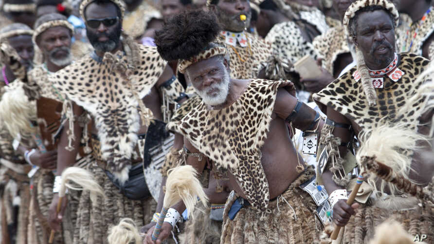 Members of the Shembe Church wearing leopard skins during their dance celebrations at eBuhleni, near Durban, South Africa, Sunday, Jan 29, 2017. At least 1,200 men in ceremonial attire have danced at a mainly Zulu gathering wearing a mix of hides of