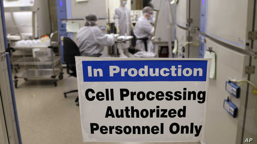 FILE - A photo shows the cell processing facility at the Fred Hutchinson Cancer Research Center where workers create customized cellular immunotherapies for patients, in Seattle, Washington, March 29, 2017.
