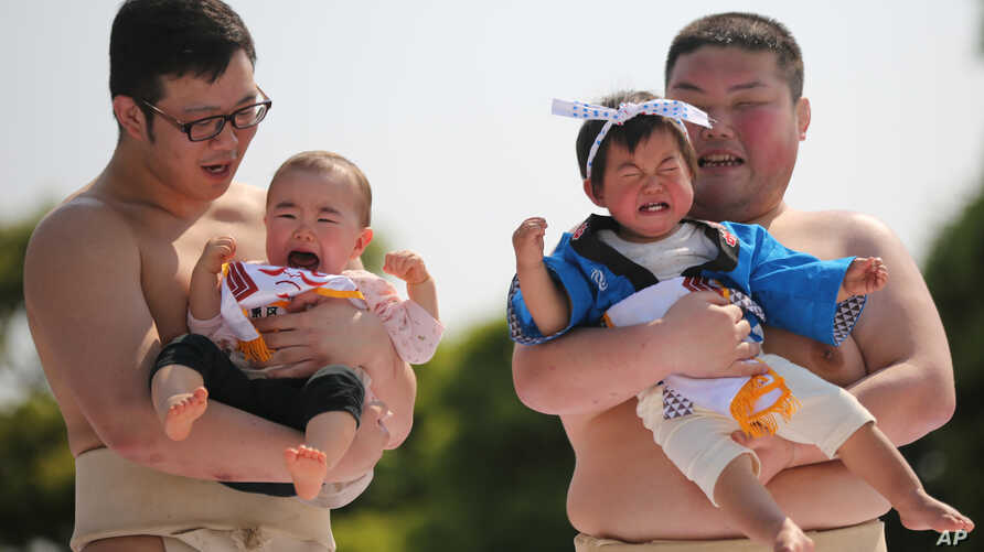 FILE - Held by college sumo wrestlers, a couple of babies cry in their Naki Sumo or Crying Baby Contest at Sensoji Buddhist temple in Tokyo.