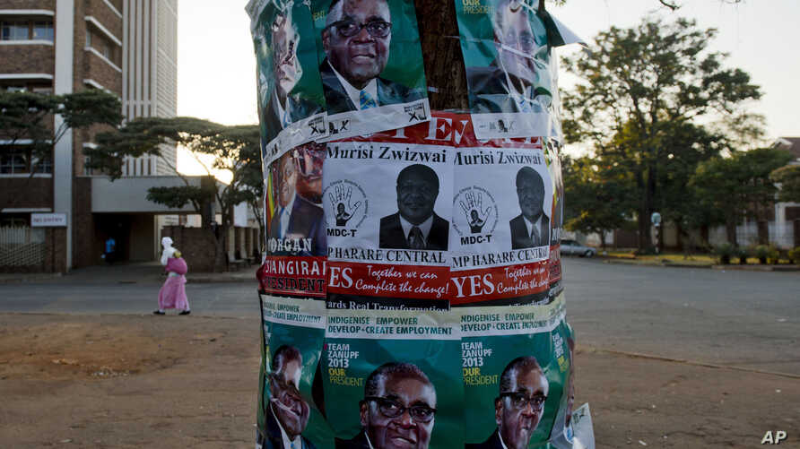 Election posters in support of Zimabwean president Robert Mugabe, top and bottom, and Morgan Tsvangirai, prime minister and leader of the Movement for Democratic Change (MDC) center left, and MDC legislator Murisi Zwizwai, center,  on a tree  on the
