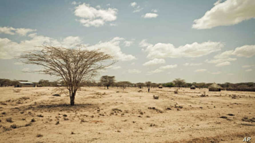 Kenya's Turkana region shows effects of severe drought affecting Horn of Africa