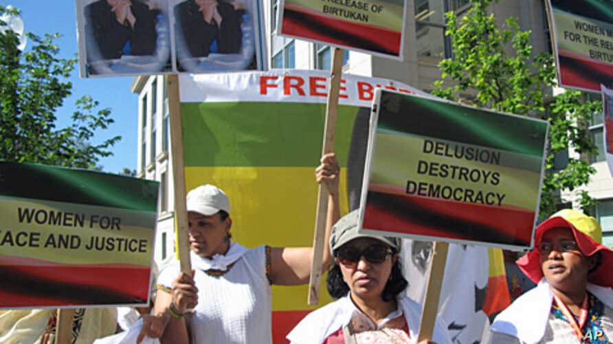 Ethiopian-American protesters said they want to promote freedom of speech in Ethiopia, but other members of diaspora say they should stay out of debate