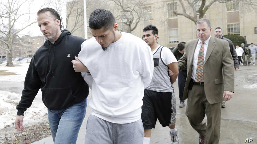 Suspected members of the MS-13 gang are escorted to their arraignment in Mineola, New York, Jan. 11, 2018.